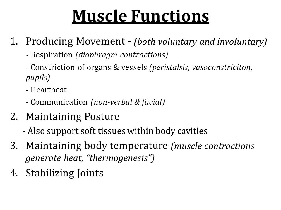 Muscle Functions Producing Movement - (both voluntary and involuntary)
