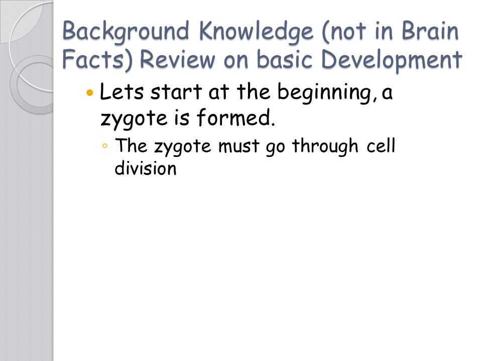 Background Knowledge (not in Brain Facts) Review on basic Development