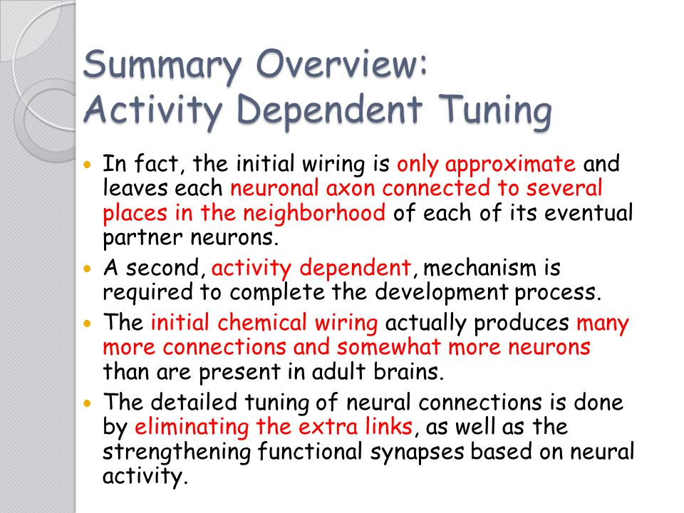 Summary Overview: Activity Dependent Tuning