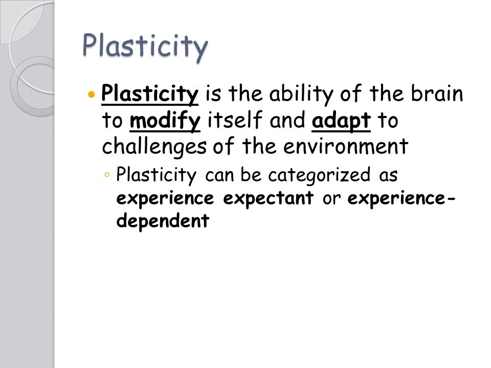 Plasticity Plasticity is the ability of the brain to modify itself and adapt to challenges of the environment.