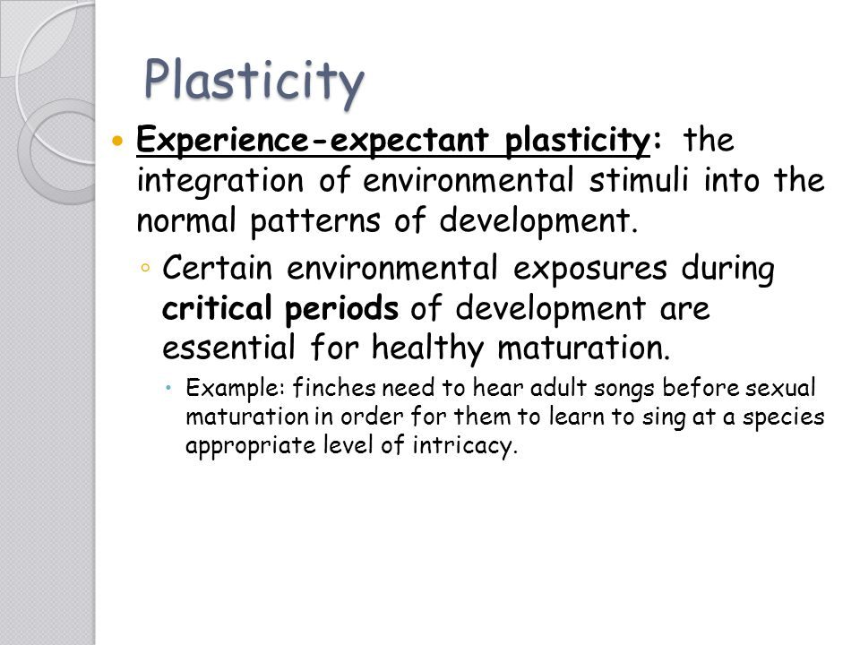 Plasticity Experience-expectant plasticity: the integration of environmental stimuli into the normal patterns of development.