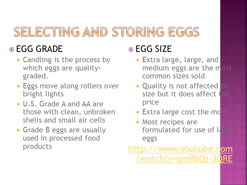 Selecting and Storing Eggs