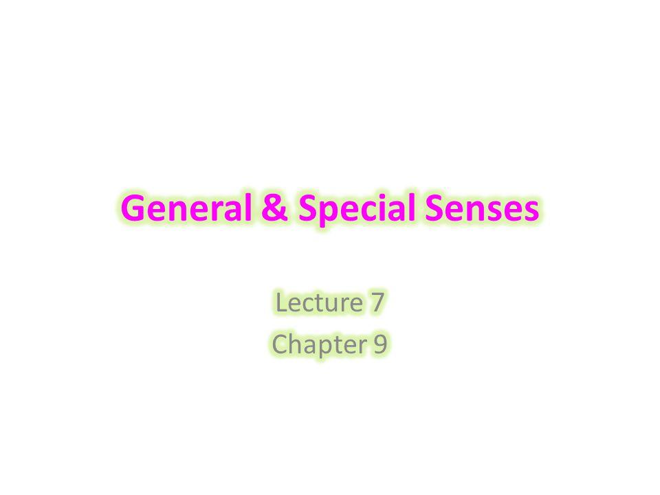 General & Special Senses