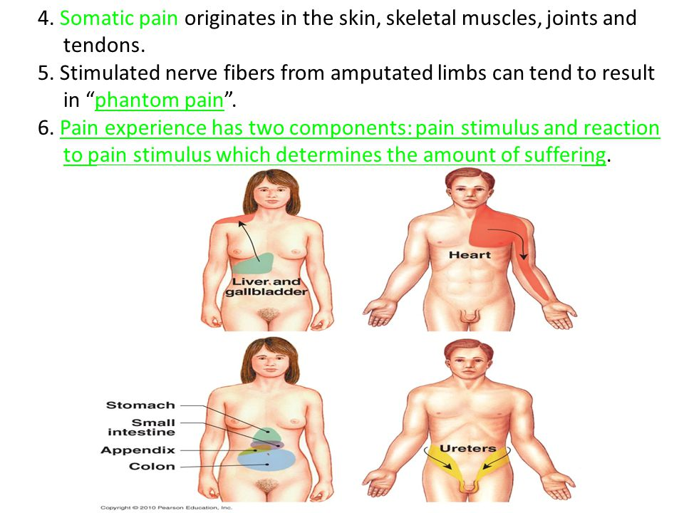4. Somatic pain originates in the skin, skeletal muscles, joints and