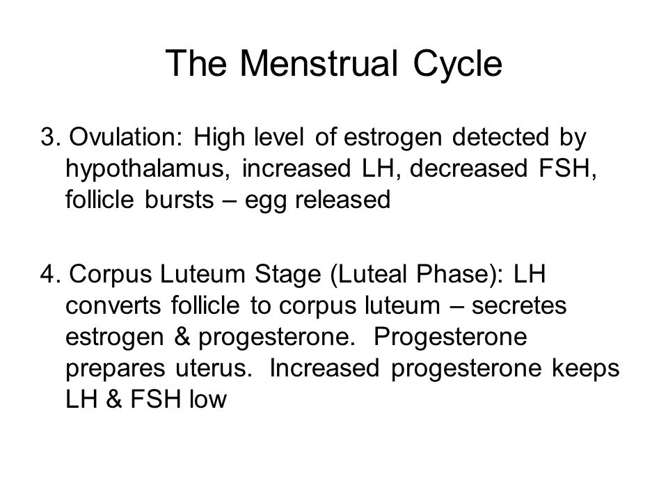 The Menstrual Cycle 3. Ovulation: High level of estrogen detected by hypothalamus, increased LH, decreased FSH, follicle bursts – egg released.
