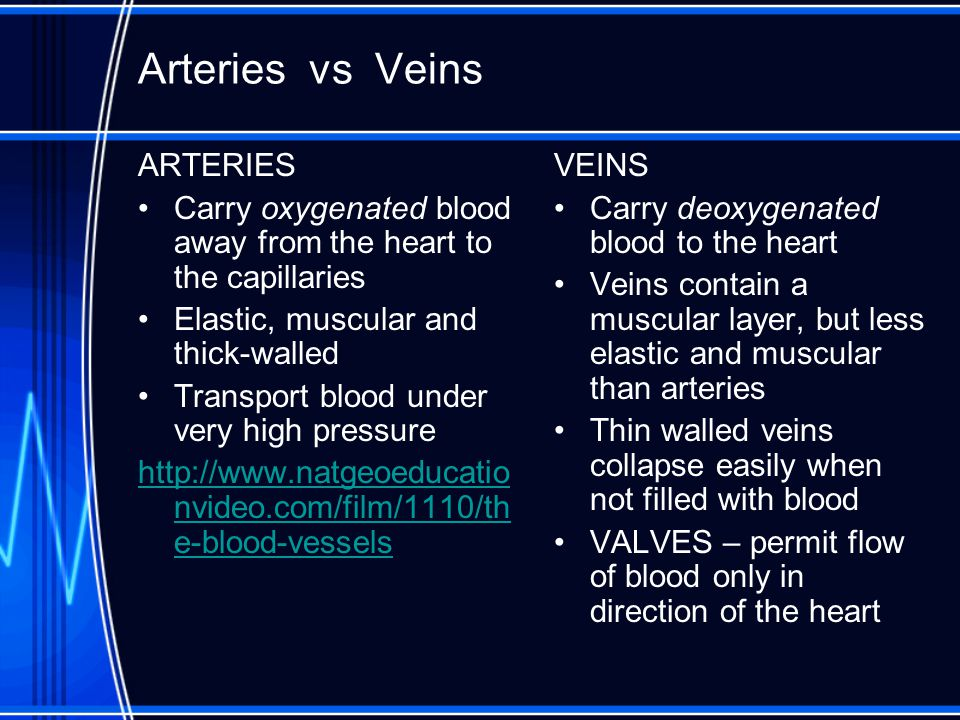Arteries vs Veins ARTERIES