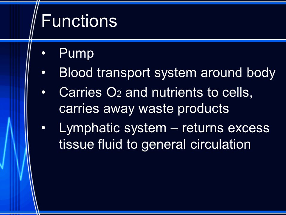 Functions Pump Blood transport system around body