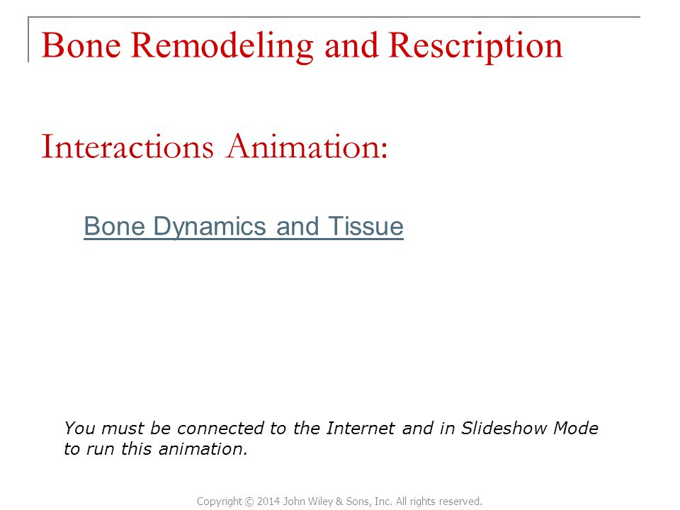 Bone Remodeling and Rescription