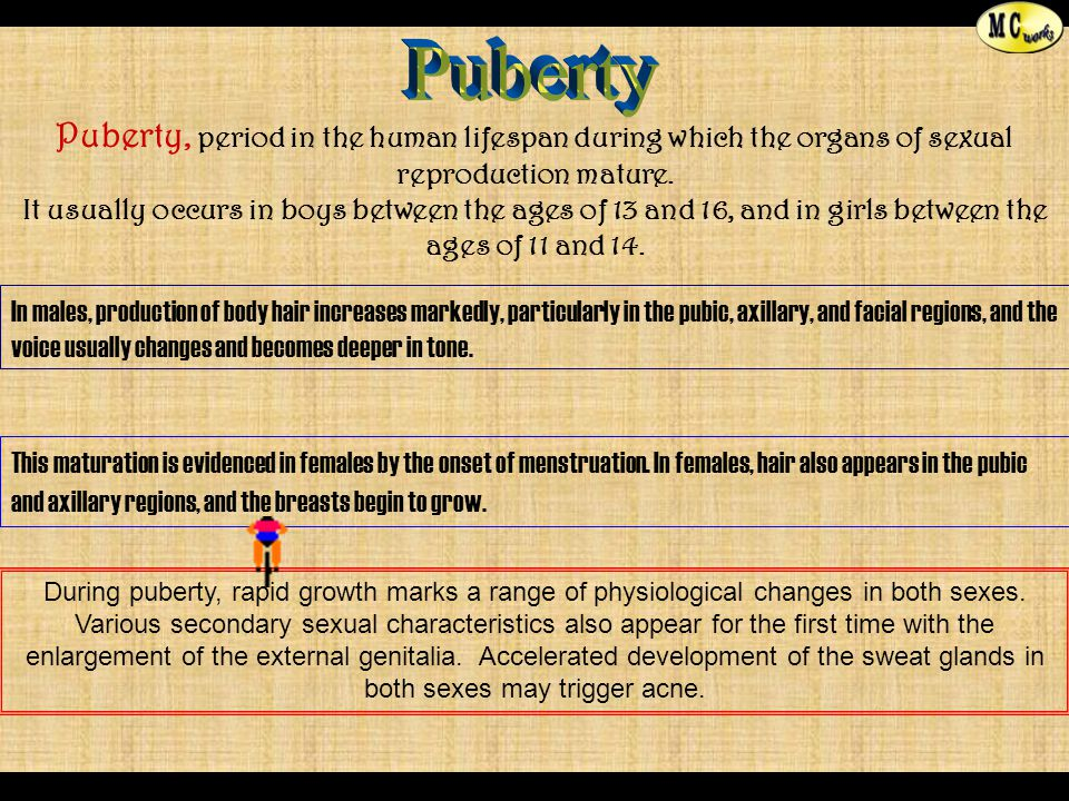 Puberty Puberty, period in the human lifespan during which the organs of sexual reproduction mature.