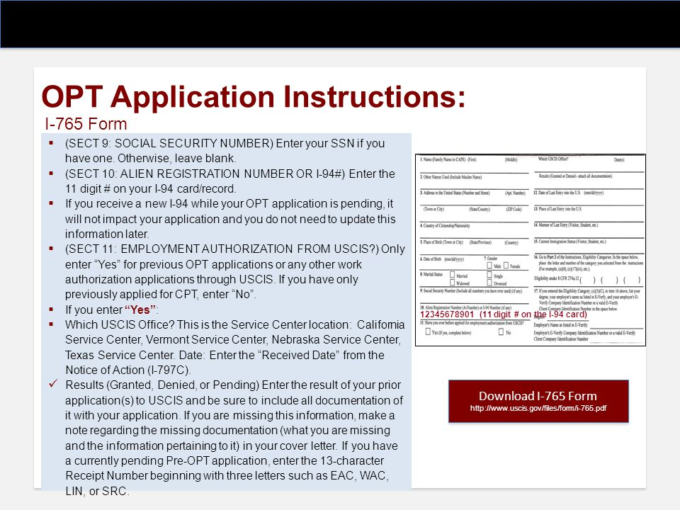 OPT Application Instructions: