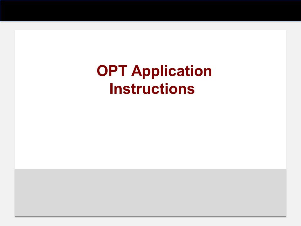 OPT Application Instructions