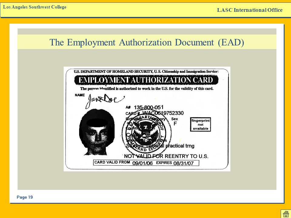 The Employment Authorization Document (EAD)