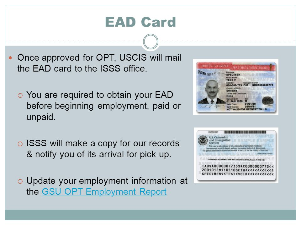 EAD Card Once approved for OPT, USCIS will mail the EAD card to the ISSS office.