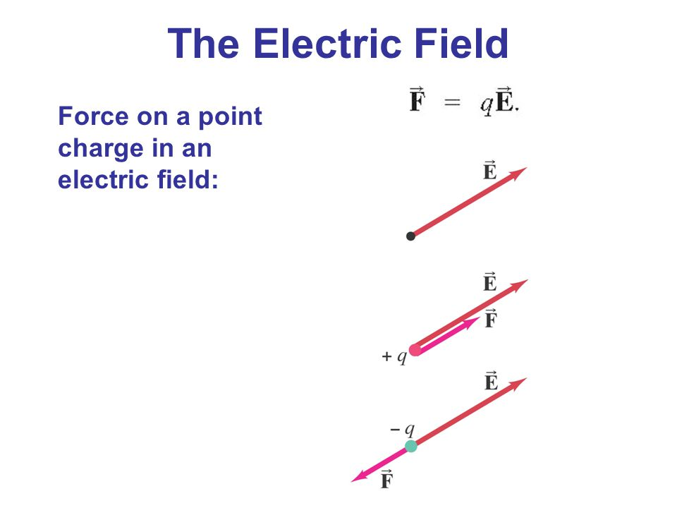 The Electric Field Force on a point charge in an electric field: