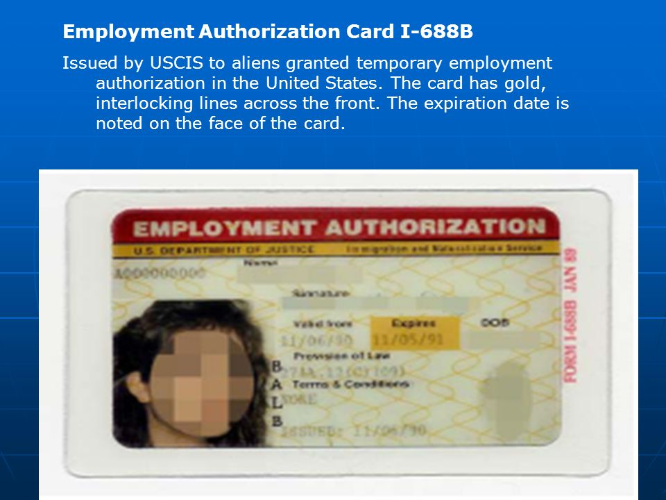 Employment Authorization Card I-688B