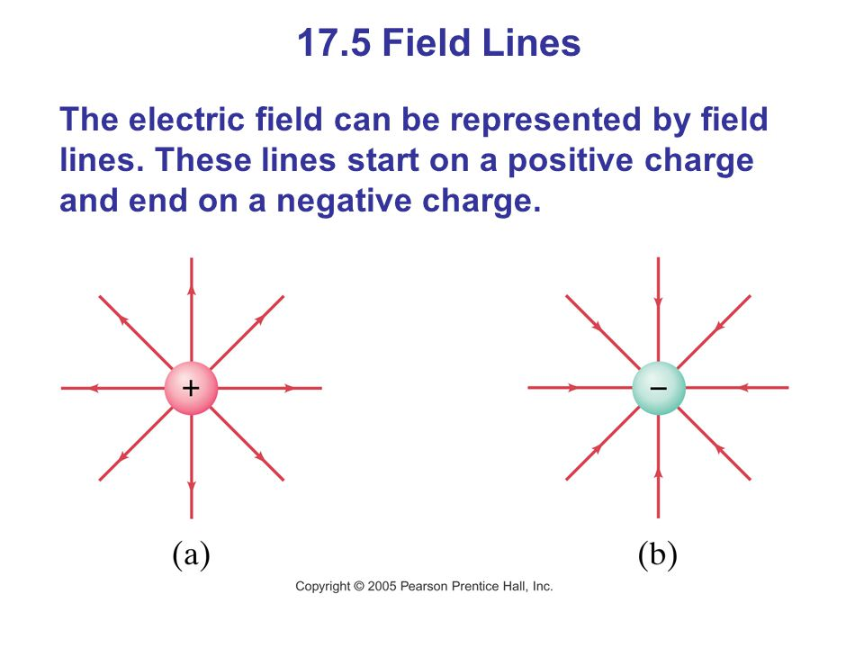 17.5 Field Lines The electric field can be represented by field lines.