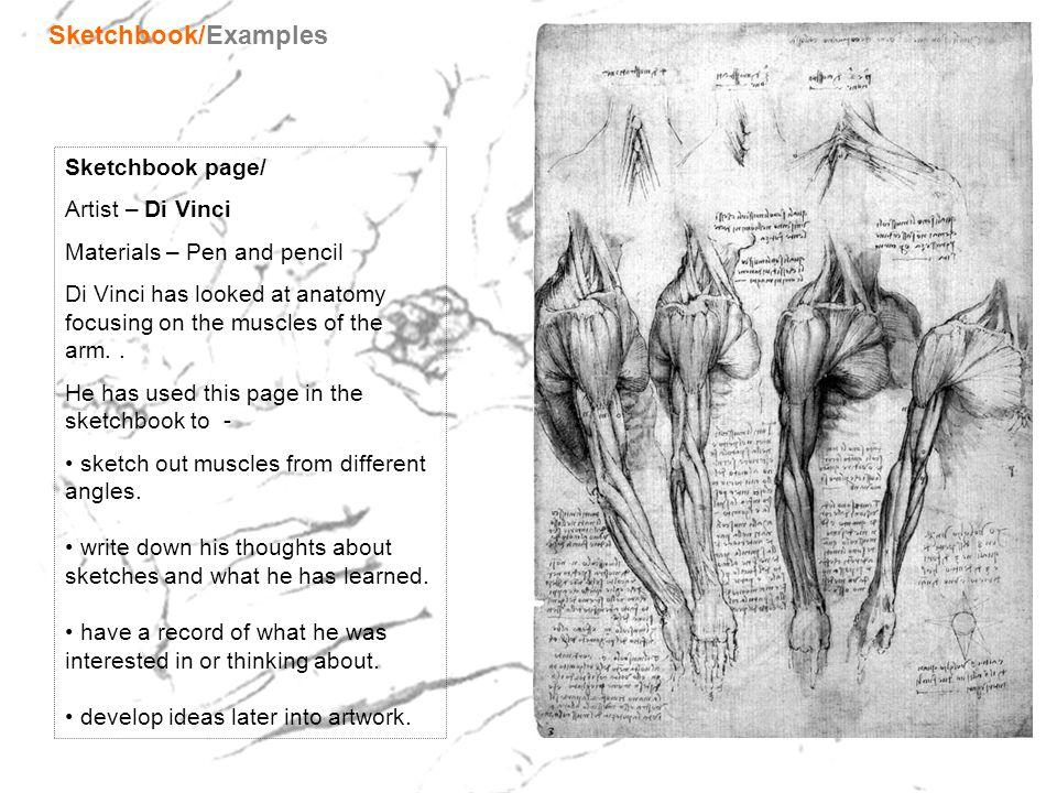 Sketchbook/Examples Sketchbook page/ Artist – Di Vinci