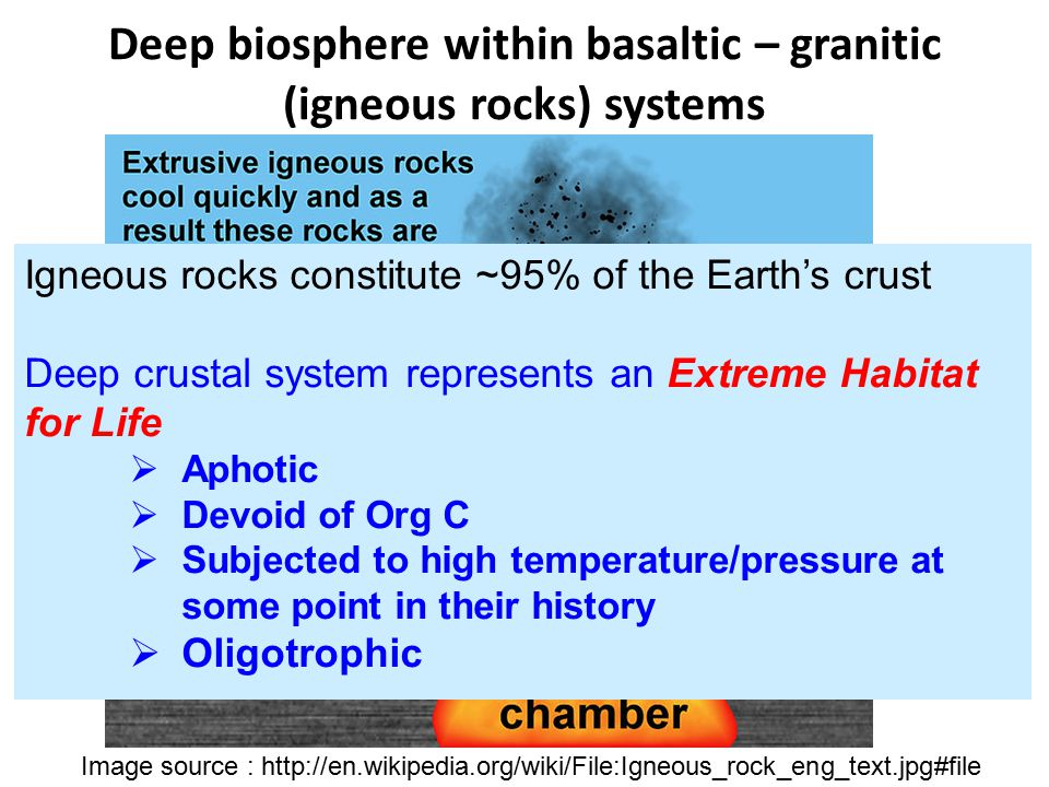 Deep biosphere within basaltic – granitic (igneous rocks) systems