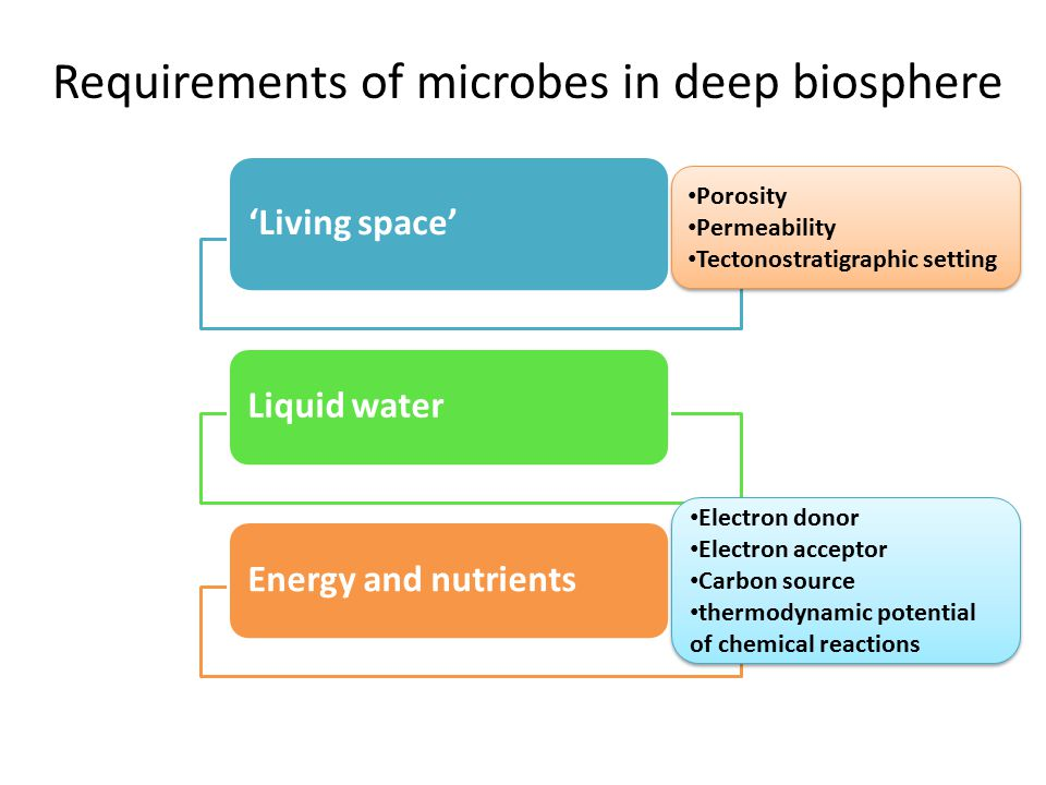 Requirements of microbes in deep biosphere