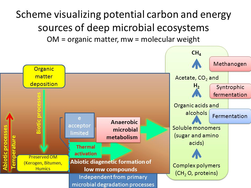 Abiotic diagenetic formation of low mw compounds