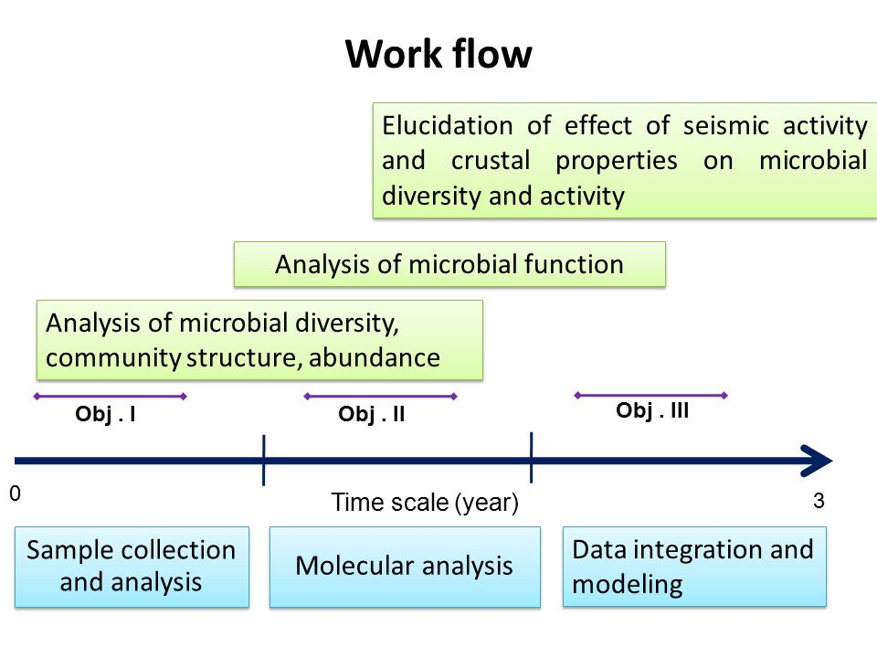 Work flow Elucidation of effect of seismic activity and crustal properties on microbial diversity and activity.