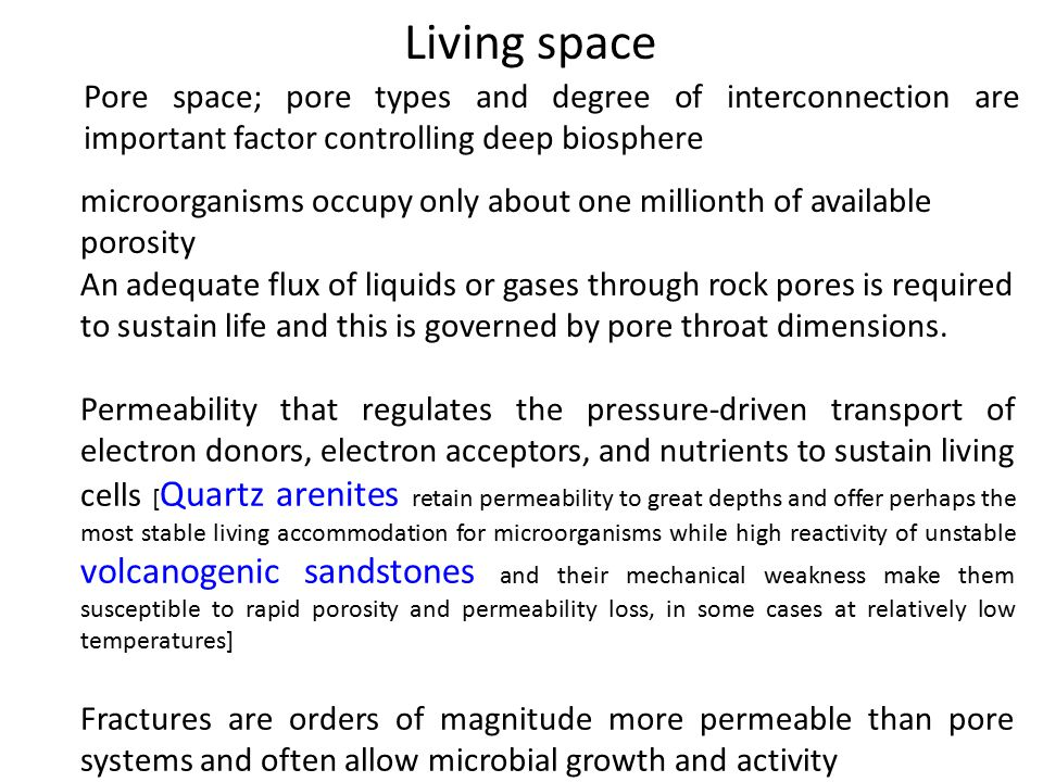 Living space Pore space; pore types and degree of interconnection are important factor controlling deep biosphere.