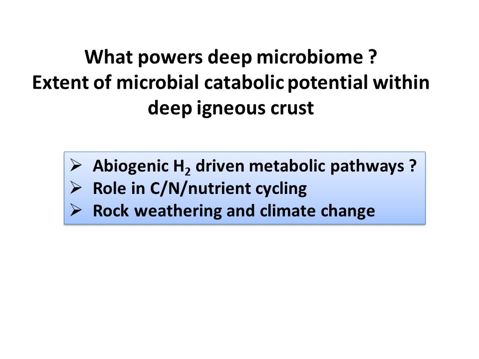 What powers deep microbiome