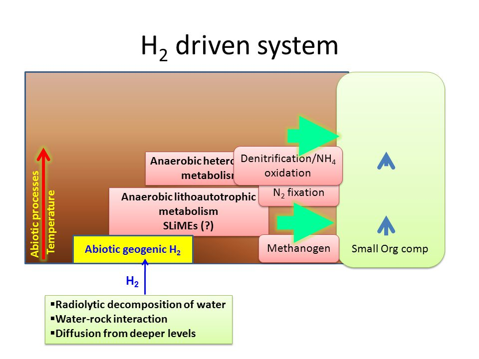 H2 driven system Abiotic diagenetic formation of low mw compounds