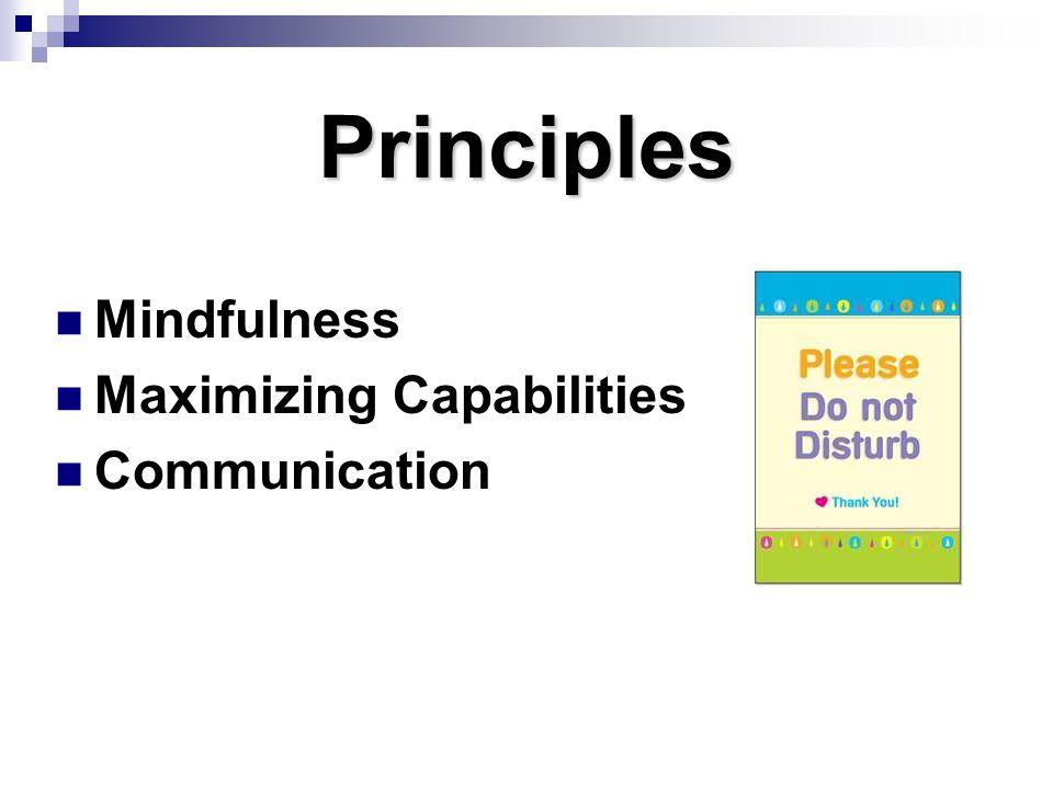 Principles Mindfulness Maximizing Capabilities Communication (Page 7)