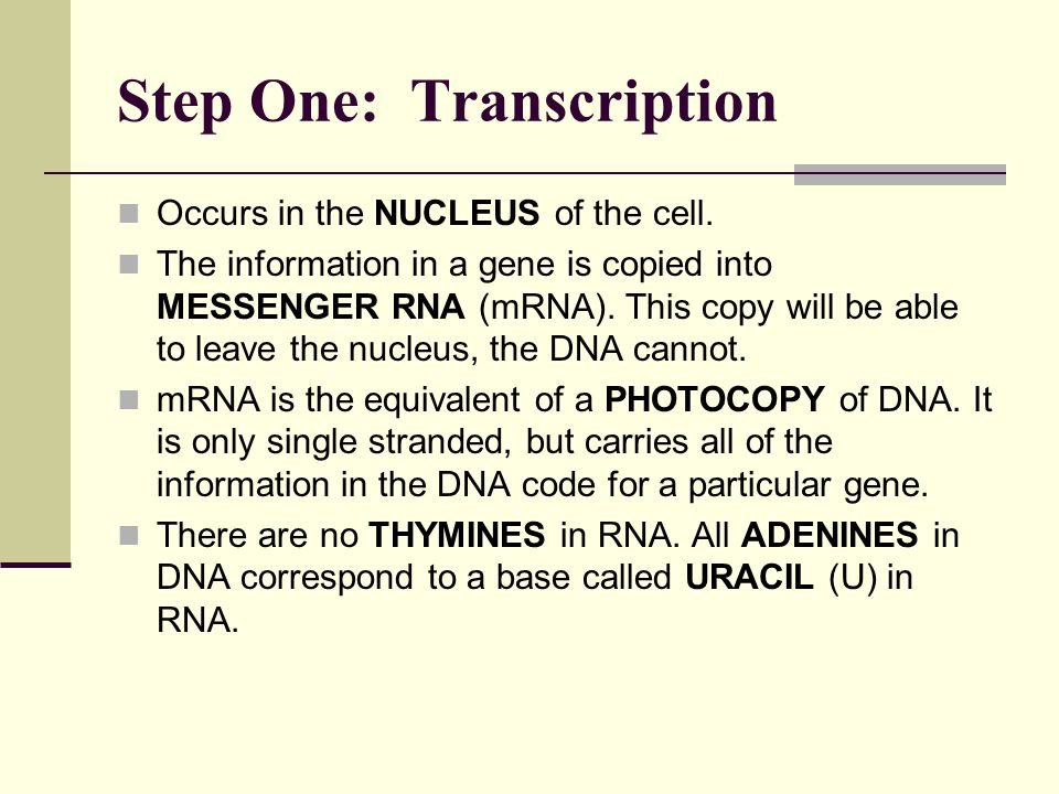 Step One: Transcription