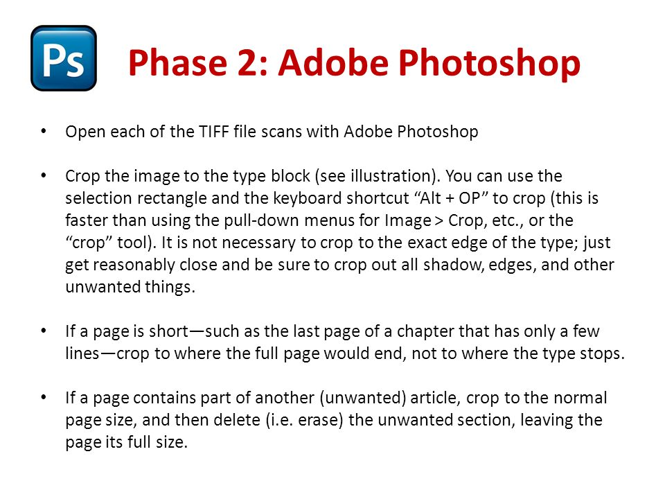 Phase 2: Adobe Photoshop