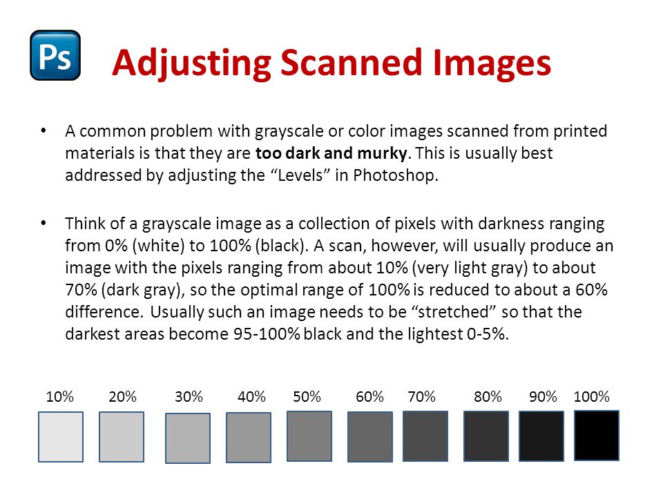 Adjusting Scanned Images