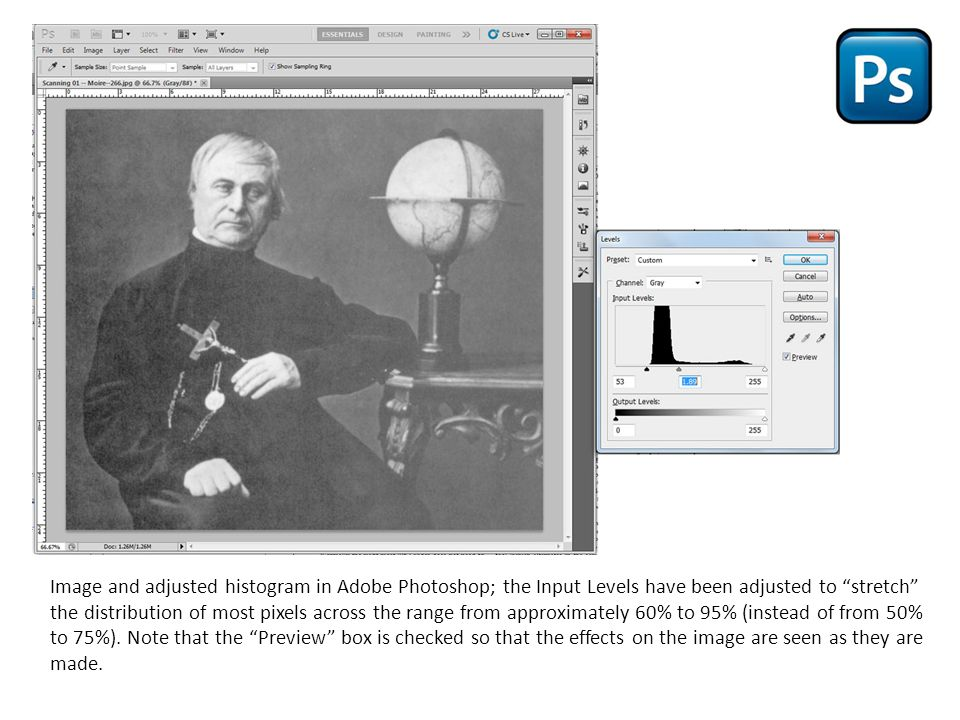 Image and adjusted histogram in Adobe Photoshop; the Input Levels have been adjusted to stretch the distribution of most pixels across the range from approximately 60% to 95% (instead of from 50% to 75%).