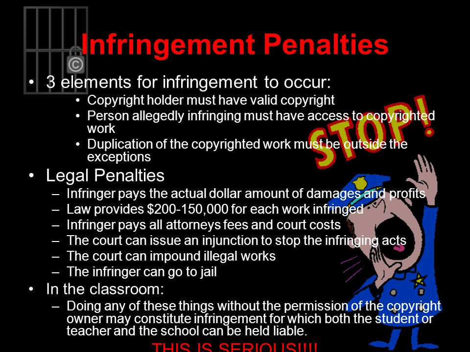 Infringement Penalties