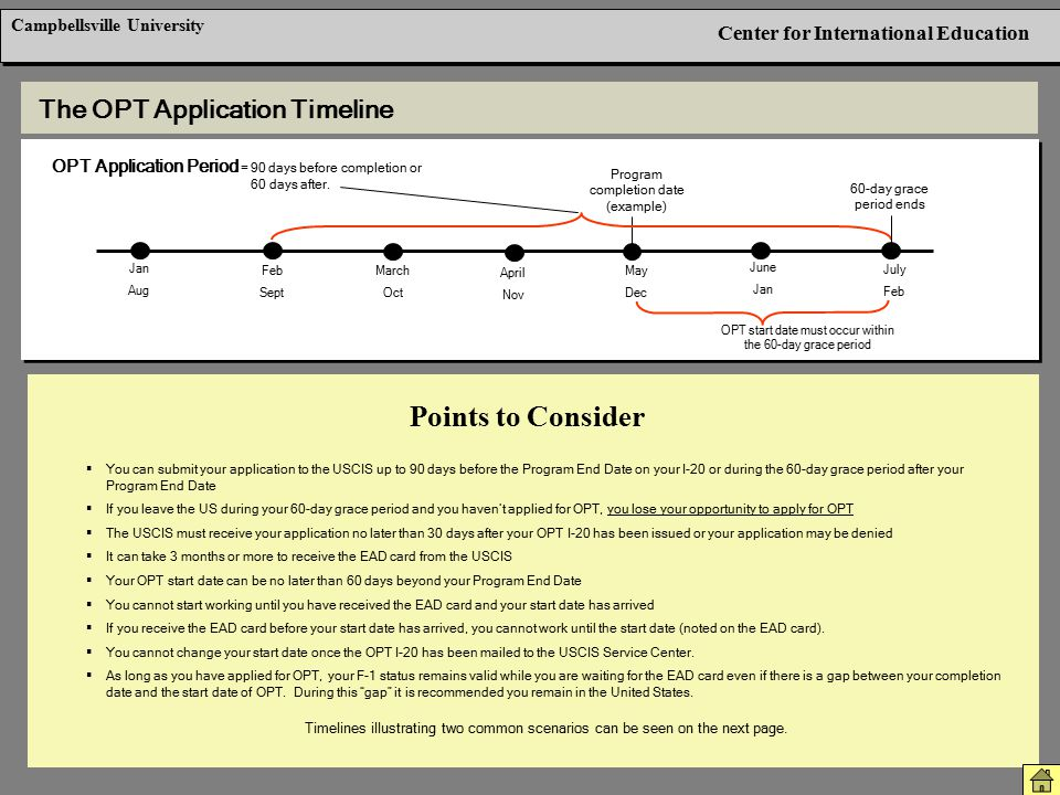 Points to Consider The OPT Application Timeline