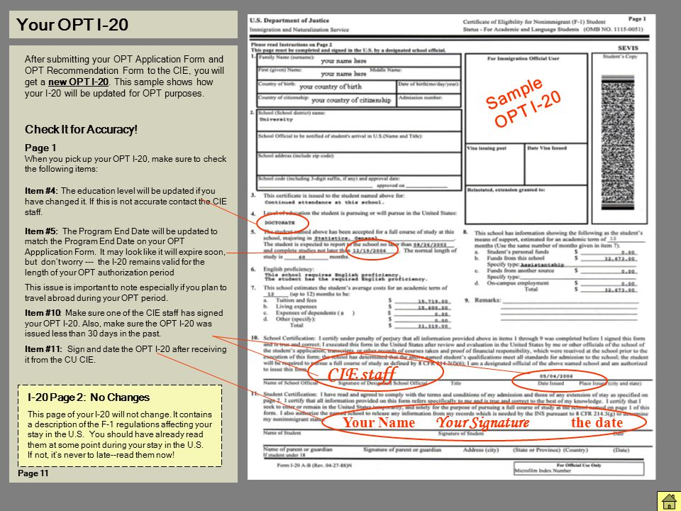 CIE staff Your OPT I-20 Sample OPT I-20
