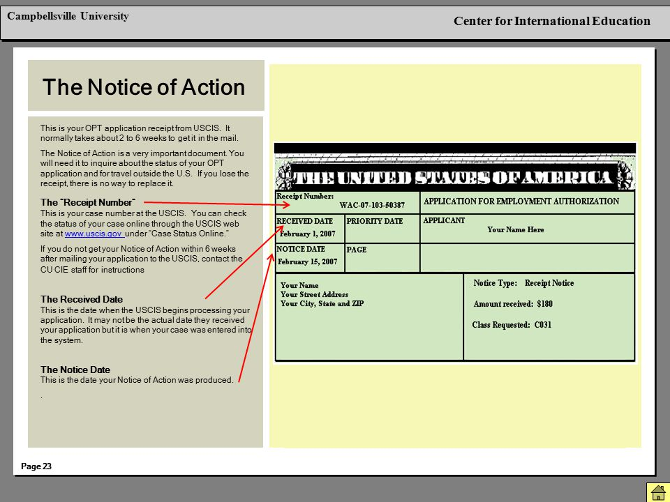 The Notice of Action Berkeley International Office