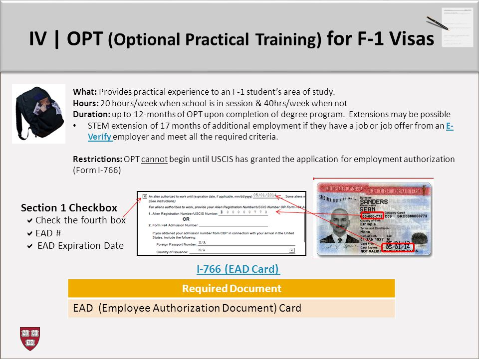 IV | OPT (Optional Practical Training) for F-1 Visas