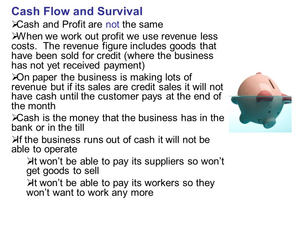 Cash Flow and Survival Cash and Profit are not the same