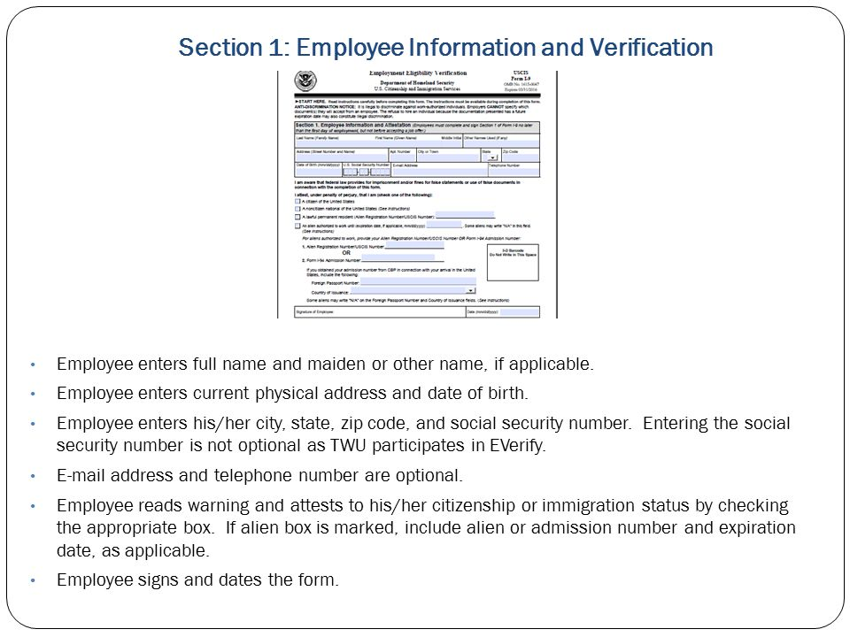 Section 1: Employee Information and Verification