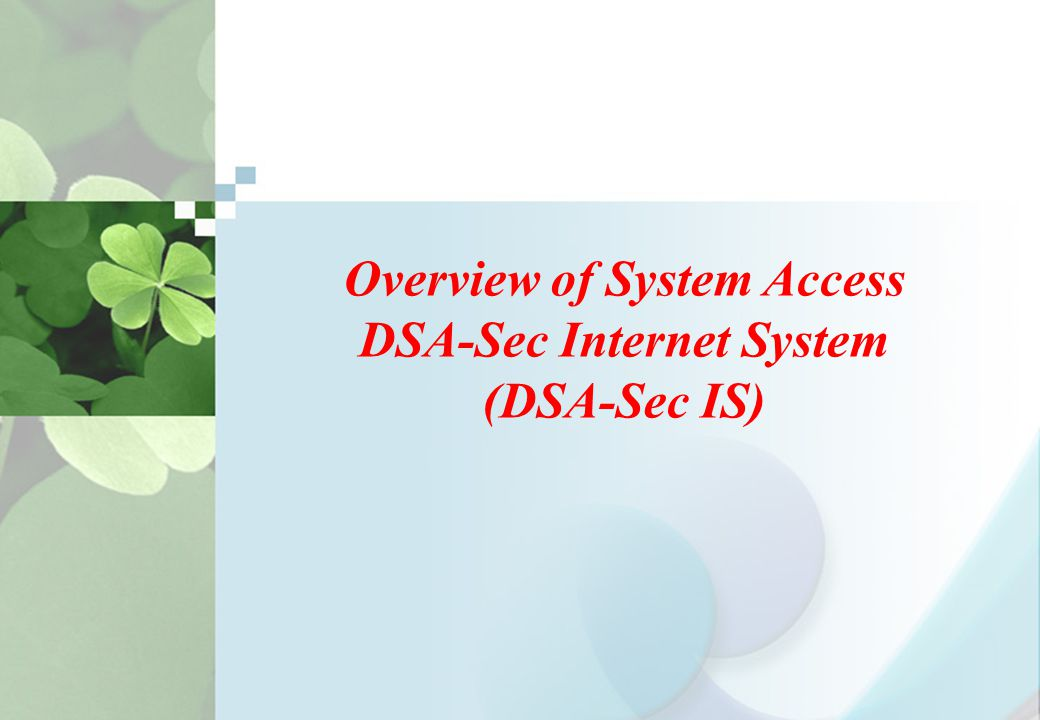 Overview of System Access DSA-Sec Internet System