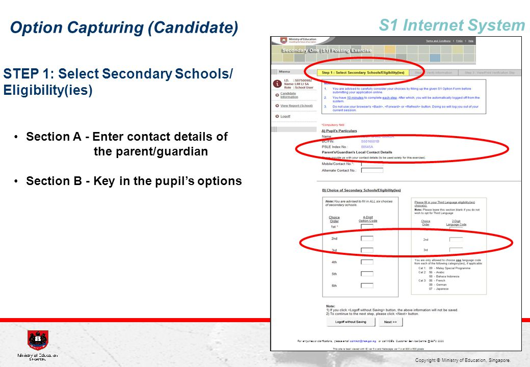 Option Capturing (Candidate) S1 Internet System