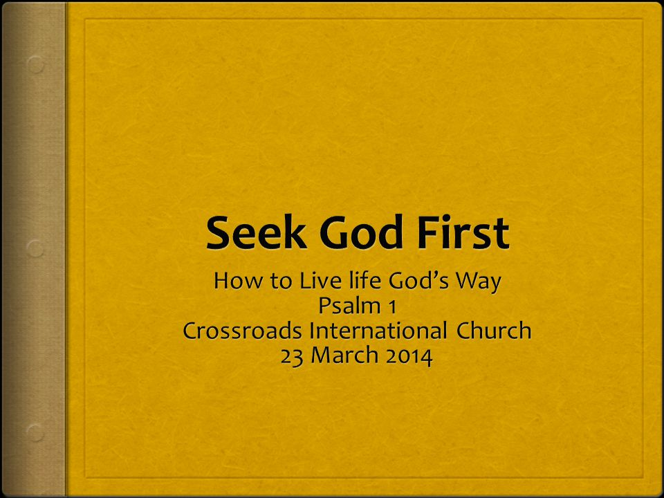 Seek God First How to Live life God's Way Psalm 1