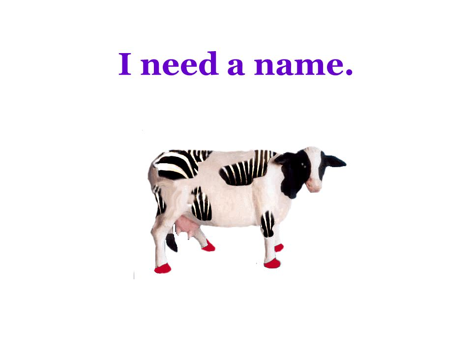 I need a name.