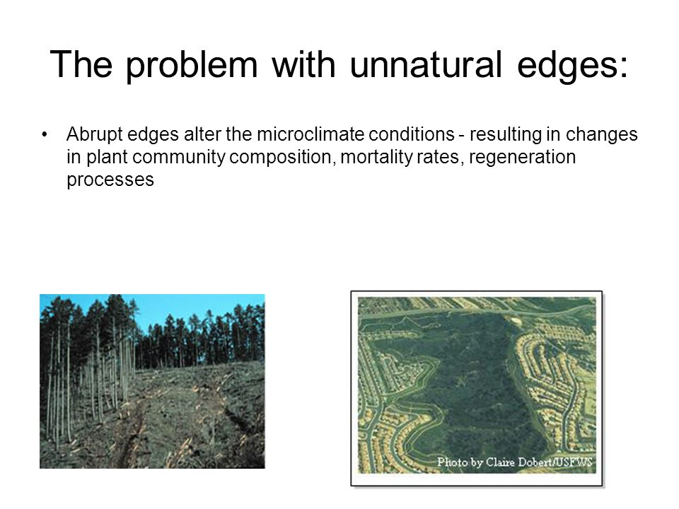 The problem with unnatural edges: