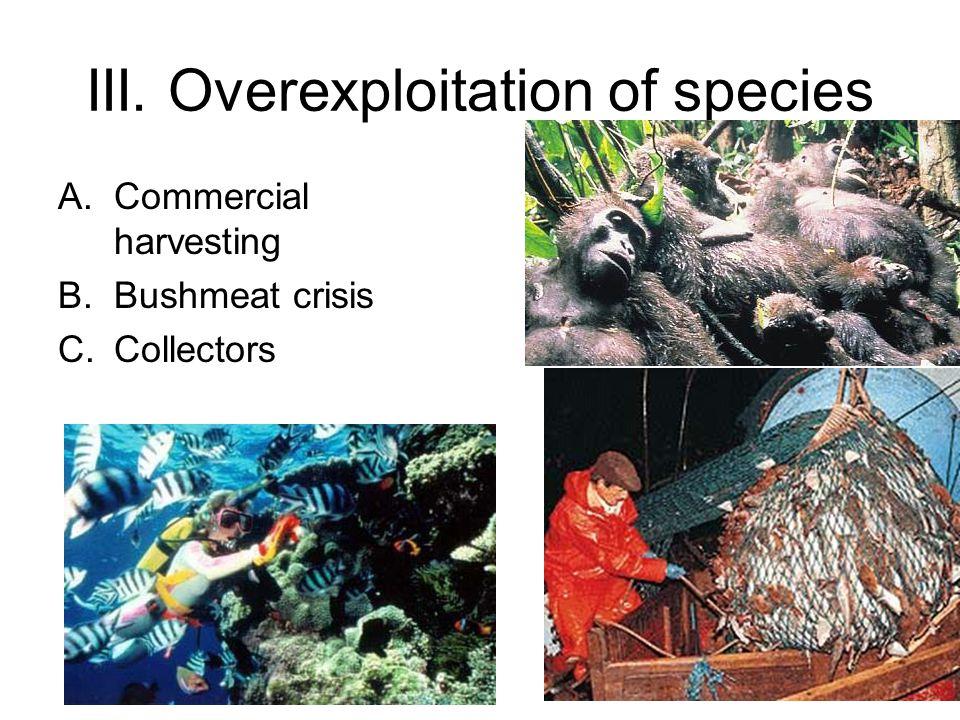 III. Overexploitation of species