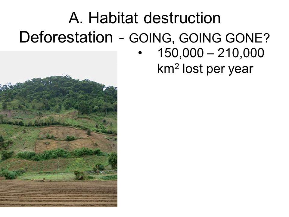 A. Habitat destruction Deforestation - GOING, GOING GONE