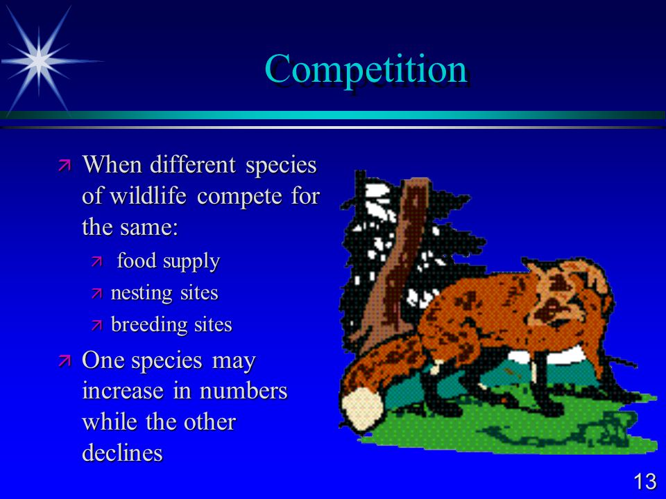 Competition When different species of wildlife compete for the same: