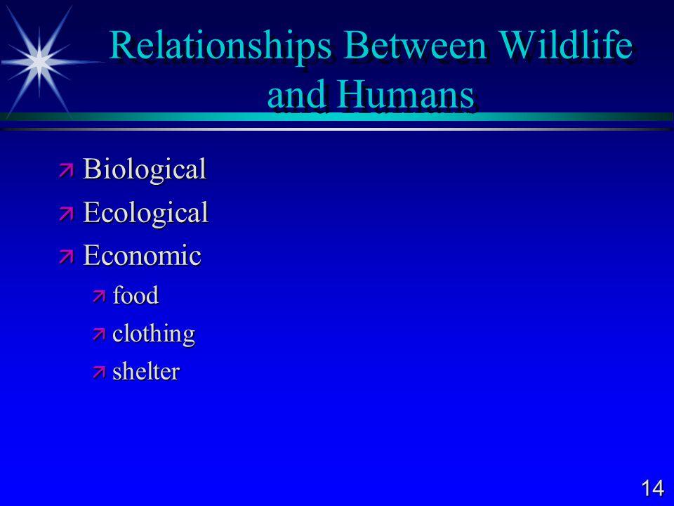 Relationships Between Wildlife and Humans