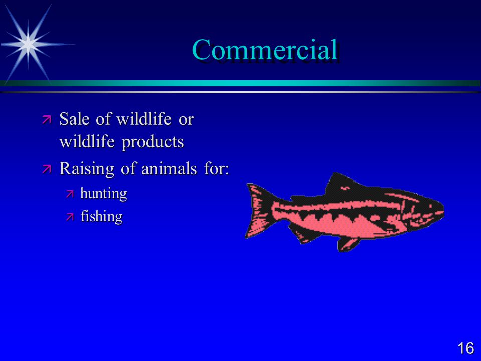 Commercial Sale of wildlife or wildlife products